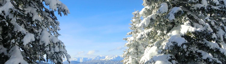 winterwandern gruppe schladming ramsau am dachstein winter urlaub