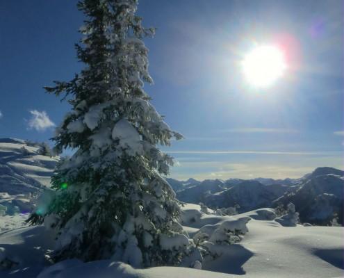 Schneeschuhwandern in Schladming im Winter, Schneeschuhwandern mit Gruppe in Österreich